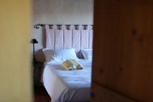 Single Deluxe room at Tuscany Yoga Retreat